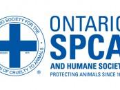 Ontario SPCA. File photo.