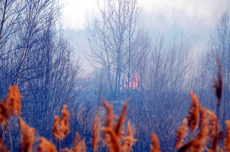 Ingleside Marsh Fire 05 Apr2915 Edited