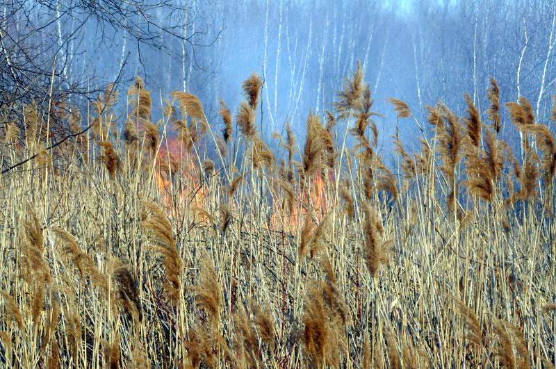Ingleside Marsh Fire 06 Apr2915 Edited
