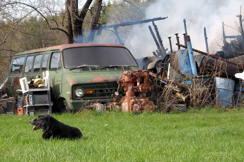 A black lab lies in the grass while firefighters (not shown) put out the remainder of this storage shed fire on Paragon Rd. on May 5, 2015. The building is a total loss. (Cornwall Newswatch/Bill Kingston)