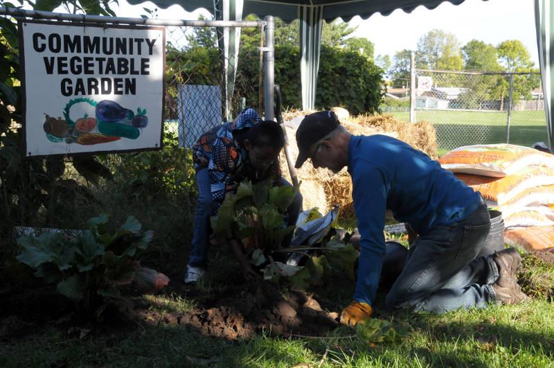 Community Garden Berries Oct0115 Edited
