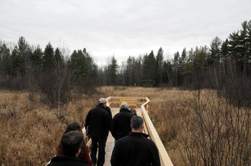 Warwick Forest Trail Nov2715 04 Edited