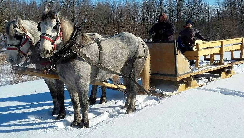 sleigh-rides-lamoureux-park-jan0117-edited