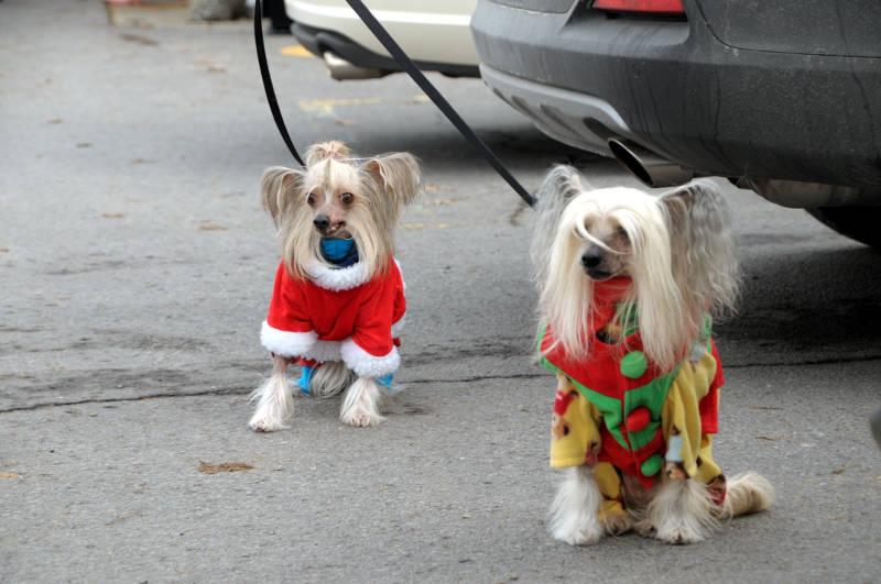 Morrisburg Santa Dec0217 05 Edited
