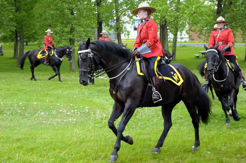 RCMP Musical Ride MAy2618 03 Edited