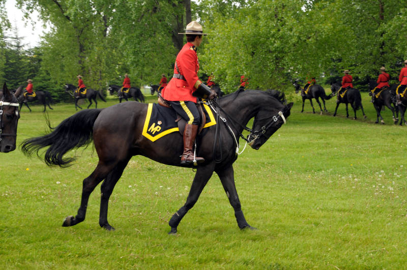 RCMP Musical Ride MAy2618 05 E